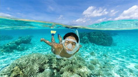 the clearest water in the world 33 beautiful beaches where you can swim in the world s