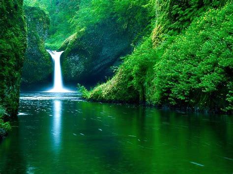 imagenes de naturaleza verdes cascada verde naturaleza full hd fondo de pantalla fondos