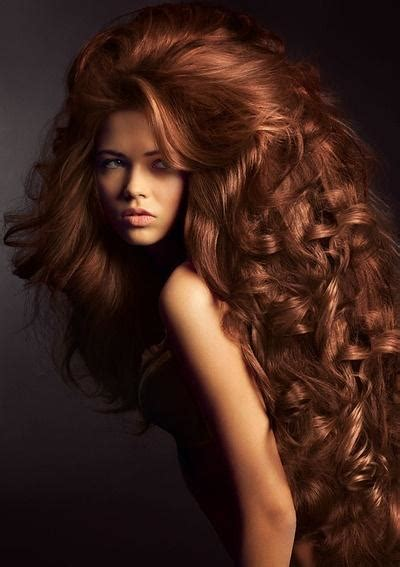 lioness style haircut lioness hairstyle long hairstyles how to
