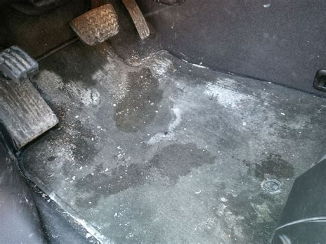 How to Remove Salt Stains from Carpets and Floors   Glen