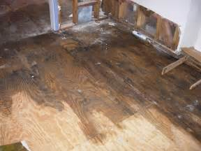 Water Damage An Update On No Fuss Systems Of Water Damage Restoration