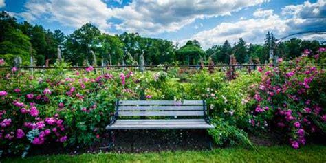 connecticut gardens public gardens rose gardens garden