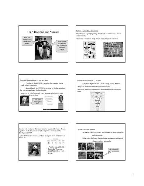 Virus And Bacteria Worksheet by 28 Viruses Worksheet Answers Virus Worksheet