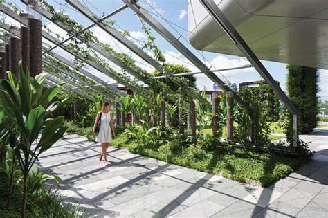 lady cilento childrens hospital landscapes architectureau