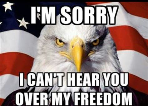 Cant See You Cant Hear You But You 1 3 Hoon Ko Segel i m sorry i can t hear you my freedom americana
