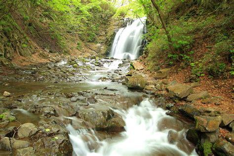 waterfall  fresh green stock photo image  freshness