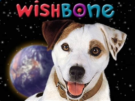 do dogs tv classic tv shows and for dogloverstore