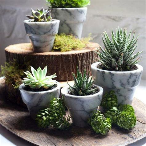 ideas for planters 25 modern ideas for flower pots and planters interior