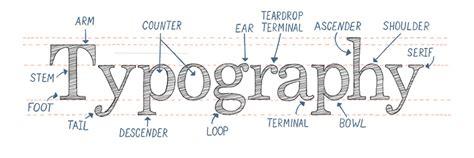 typography vocab the anatomy of typography calligraphy