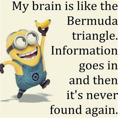 printable minion quotes 77 best printables minions images on pinterest funny