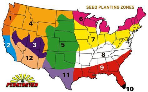 zones 9 11 gardening blend perennial rye grass seedland