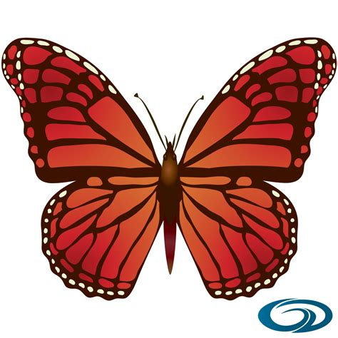 Imagenes En Png De Mariposas | imagen mariposa alexander getial 18 png im 225 genes