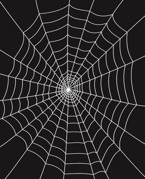 free images web spider web free vector download 4 652 free vector for