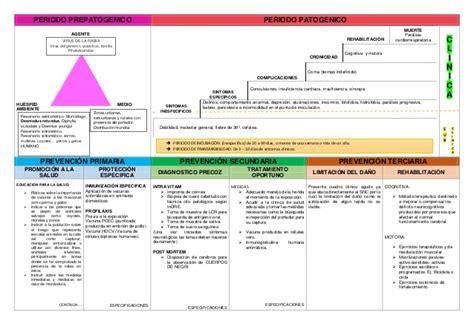 cadena epidemiologica la rabia historia natural de la enfermedad y cadena epidemiol 243 gica