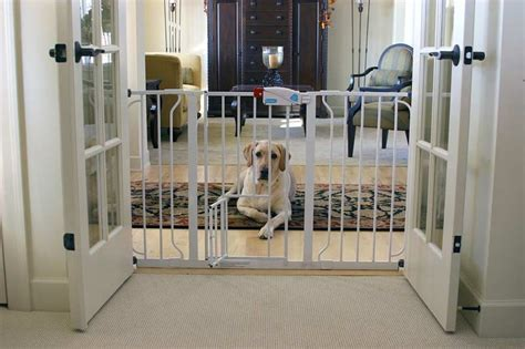 dog gates for small dogs in house carlson extra wide walk thru gate with pet door white dog cats kids baby ebay