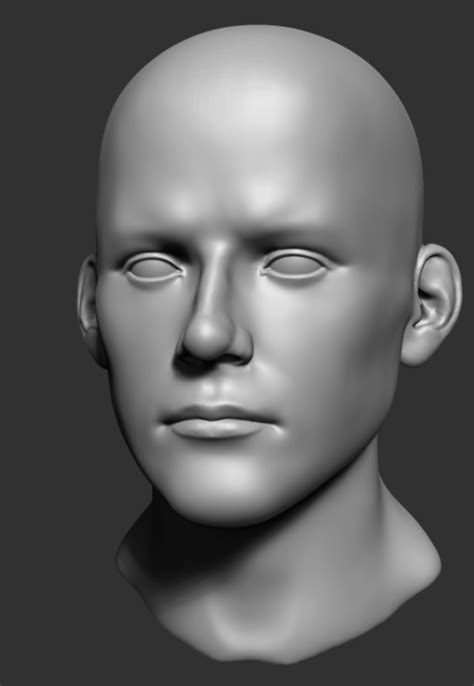 head sculpting tutorial in zbrush zbrush head proportions tutorial by grimnor on deviantart
