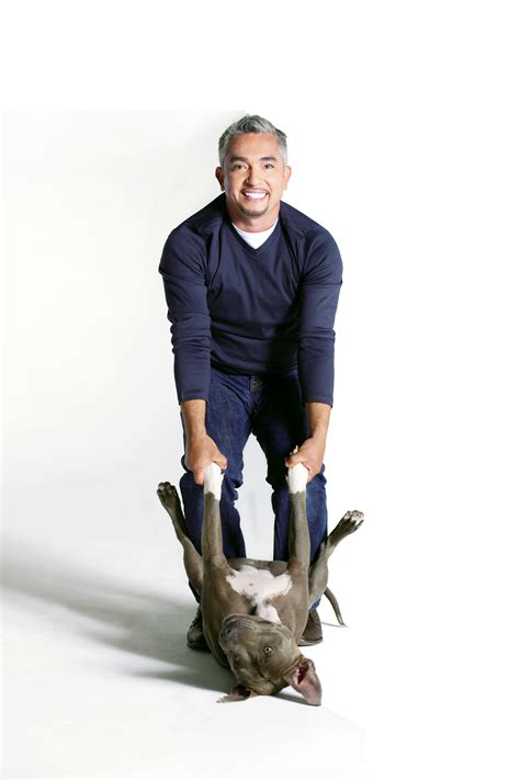 whisperer cesar millan 7 things we learned from whisperer cesar millan at the kravis featured