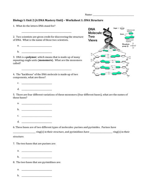 section 2 replication of dna section 2 replication of dna answers chapter12 packet 5