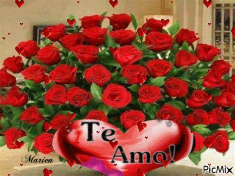 imagenes de rosas para mi amor flores para ti mi amor picmix