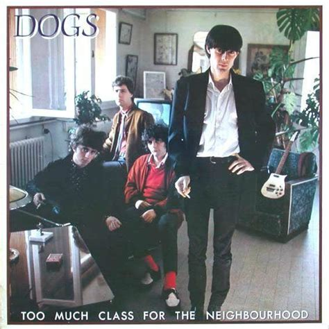 how much are classes quot much class for the neighbourhood quot dogs rock fever