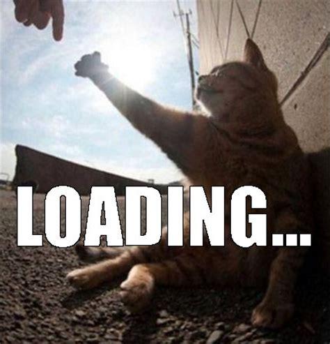 Loading Meme - gravitational waves maze and funny cats pokies new zealand image 4016177 by yanito on favim com