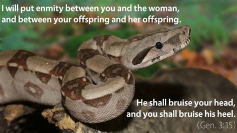serpent in genesis 3 january 3rd bible meditation for genesis 3