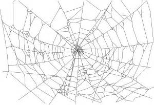 pattern web clips realistic clipart spider web pencil and in color