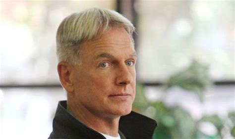 why jethro gibbs such ugly haircut pick of the day april 24 ncis tv radio showbiz tv