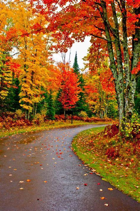 Autumn Bliss Romancing Wisconsin 5 best 20 autumn pictures ideas on autumn