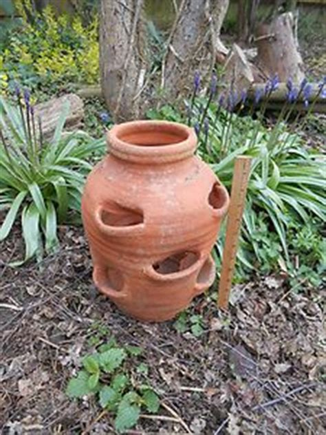 Clay Strawberry Planter Strawberry Planters Strawberry Planter Available At