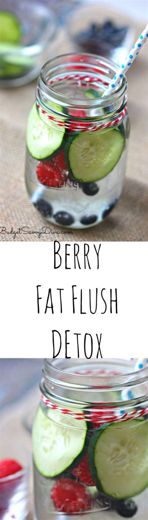 Flush Detox Recipe by 38 Diy Detox Ideas Diy
