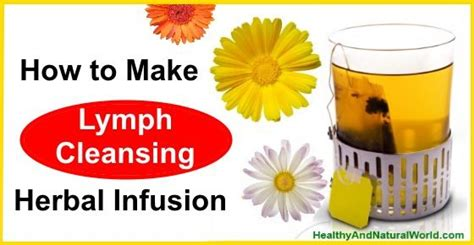 Lymph Detox Herbs by Lymph Cleansing Herbal Infusion Sante