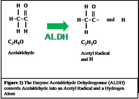 Acetaldehyde Detox by Opinions On Aldehyde Dehydrogenase