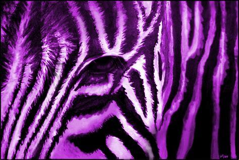 furry zebra print wallpaper for walls fuzzy purple zebra by nukedperogy on deviantart
