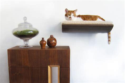 desain kamar kucing desain furniture kreatif ramah kucing perabot rumah