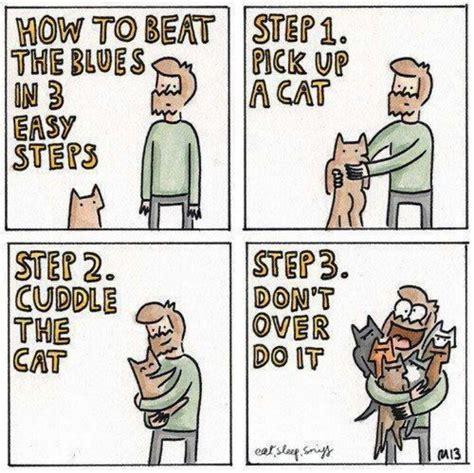Crazy Cat Man Meme - crazy cat man cat humor cats funny quotes meme