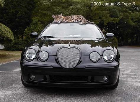 2003 jaguar s type r road test carparts com