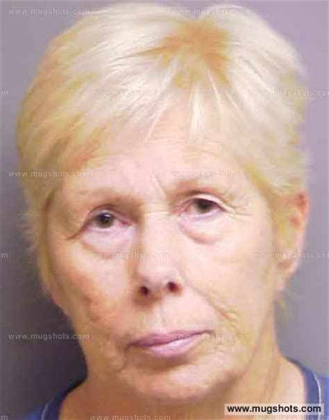 Manatee County Clerk Of Court Arrest Records Janet Heffington Former Manatee County Property