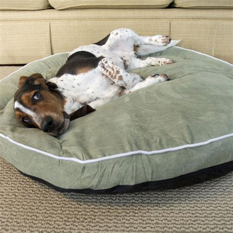 bolster dog beds bolster dog bed moss in pet beds