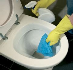 Toilets That Wash And You How To Clean A Toilet