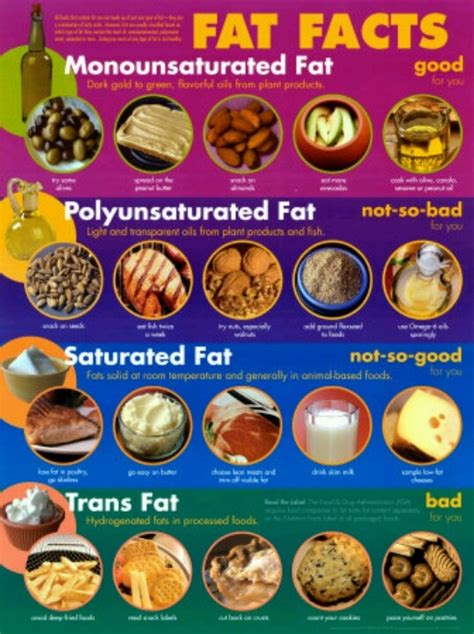 healthy fats vs trans fats 17 best images about fats oils health tips on