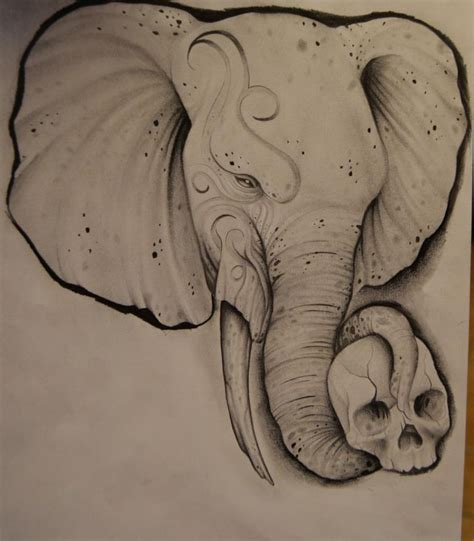 elephant skull tattoo elephant drawing by johan887766 on deviantart