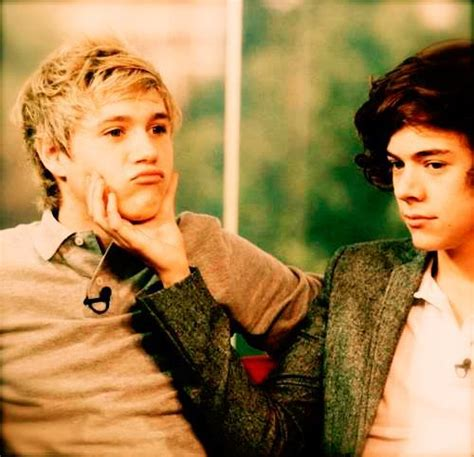 niall horan and harry make the most of the sun on their harry styles niall horan one direction image 260114