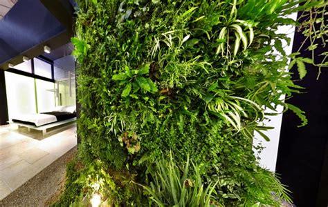 giardini verticali per interni giardini interni e pareti in verde verticale