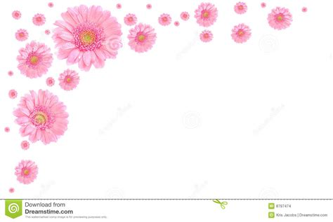 Kemeja Kasual Korea Pastel Soft Baby Pink Print Twiscone Murah pink flower frame on white background stock images image 8797474
