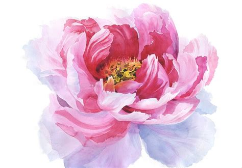 watercolor peony tattoo polina kukulieva watercolour peony watercolor my work