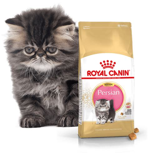 Royal Canin Kitten 2 Kg royal canin kitten 2kg internetowy sklep