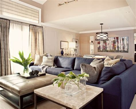 designs for living rooms in navy and beige tray vault ceiling home design ideas pictures remodel and decor