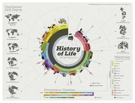 life history pattern exle 24 herramientas gr 225 ficas online blogartesvisuales