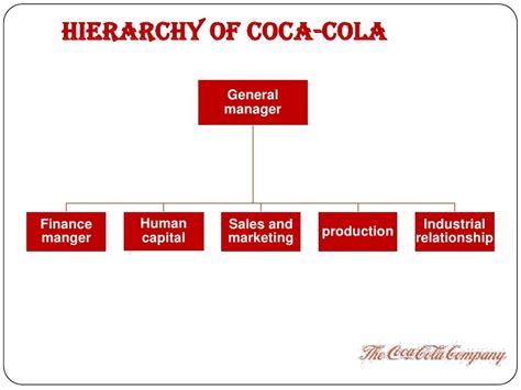Coca Cola Job Analysis Organisational Structure Of Coca Cola